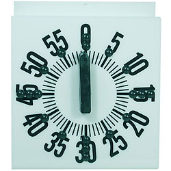Tactile Ergonomic Long Ring Low Vision Timer-White