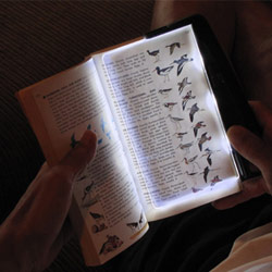 PageGlow Rechargeable LED Lighted Booklight