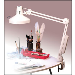 Combo Lamp - Dual Light Clamp Lamp - White