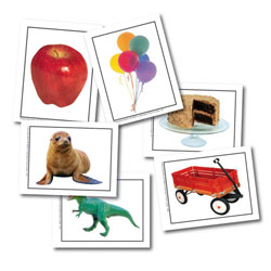 Alphabet Photo Objects Learning Cards-103 Cards