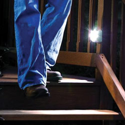 Wireless Motion Sensing Indoor-Outdoor Step Light