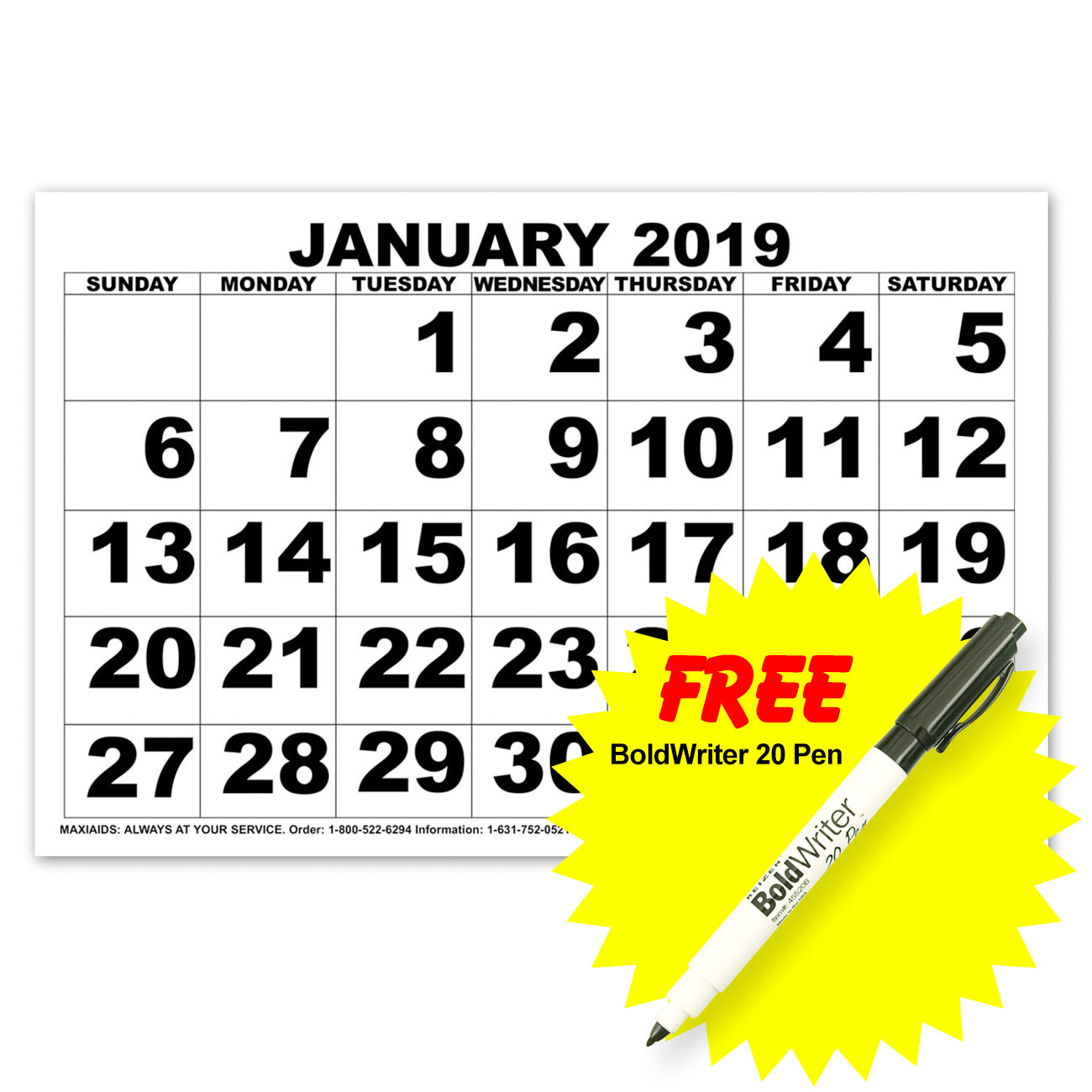 Low Vision Print Calendar - 2019 with BoldWriter 20 Pen